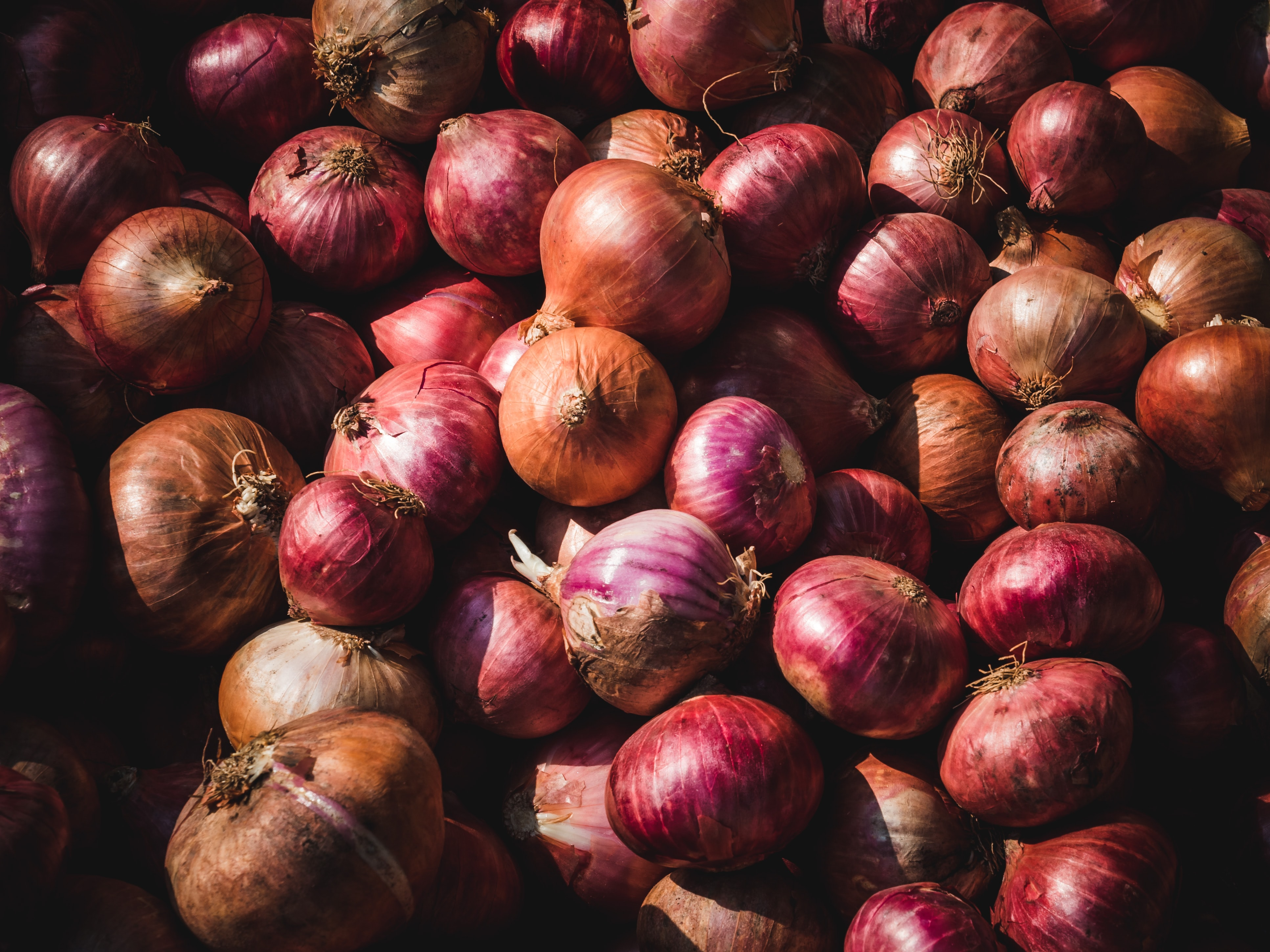 Government Lifts Ban on Onion Exports